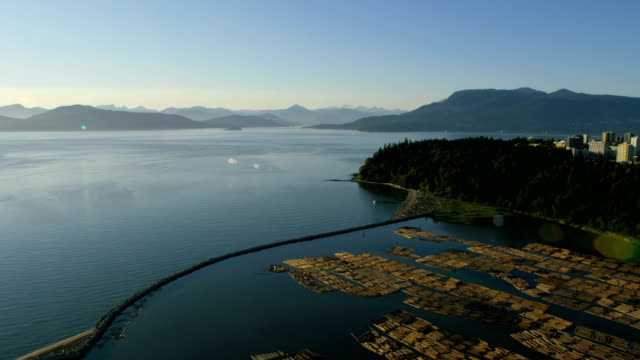 Aerial view Wreck Beach Vancouver British Columbia Canada