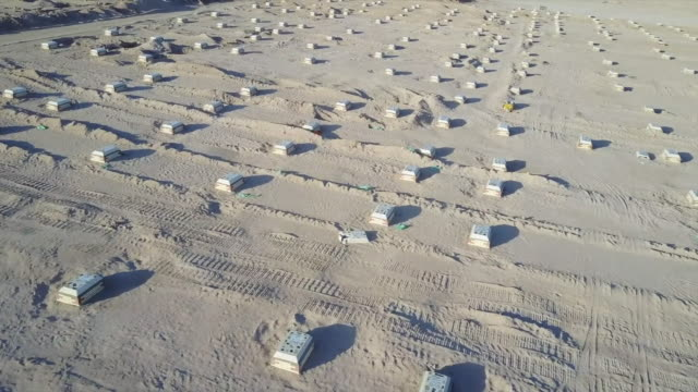aerial views of a huge mass graveyard for victims of coronavirus in the desert south of baghdad - iraq video stock e b–roll