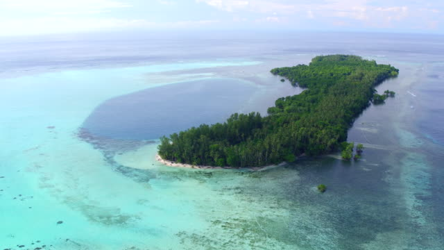 vidéos et rushes de aerial views of alim island, papua new guinea - partie d'une série