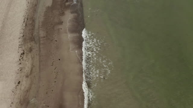 aerial views of dierhagen beach at the baltic sea - baltic sea stock videos and b-roll footage