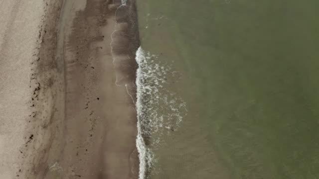 aerial views of dierhagen beach at the baltic sea - ostsee stock-videos und b-roll-filmmaterial