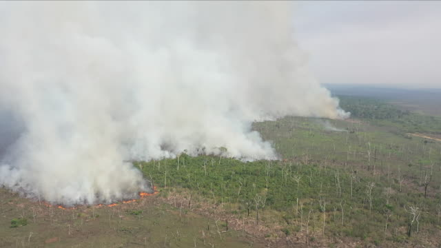 stockvideo's en b-roll-footage met aerial views of fire in the amazon rainforest - brazilië