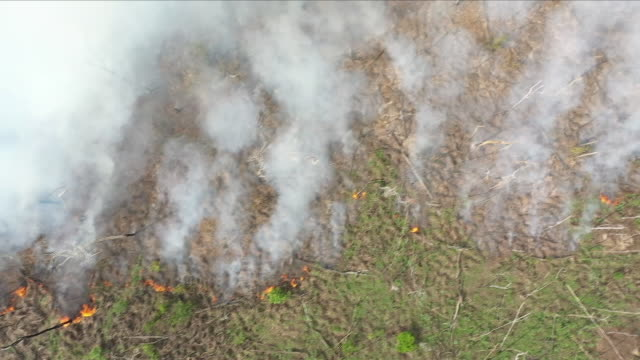 vidéos et rushes de aerial views of fire in the amazon rainforest - brûler