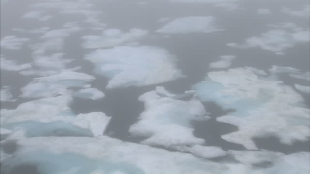 aerial views of ice floe, drift ice iceburgs floating in sea near the arctic, foggy mist weather condition. on august 25, 2007 in cambridge bay,... - icecap stock videos & royalty-free footage