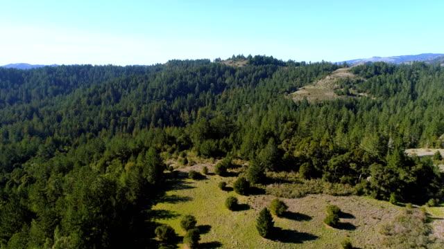 vídeos y material grabado en eventos de stock de vistas aéreas de la naturaleza del norte de california - california del norte