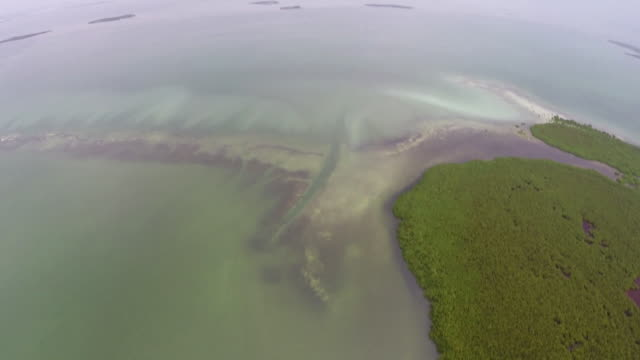 Aerial views taken from a Cessna 172 of the Florida Everglades and North Key Largo