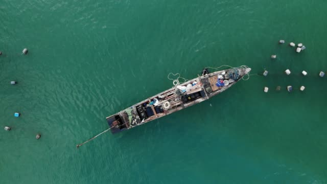 aerial view/the fisherman is carrying an oyster on the farm. - ムール貝点の映像素材/bロール