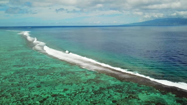 aerial: waves crash over the reef in the tropical water in the south pacific ocean in the french polynesia - moorea, french polynesia - moorea stock videos & royalty-free footage