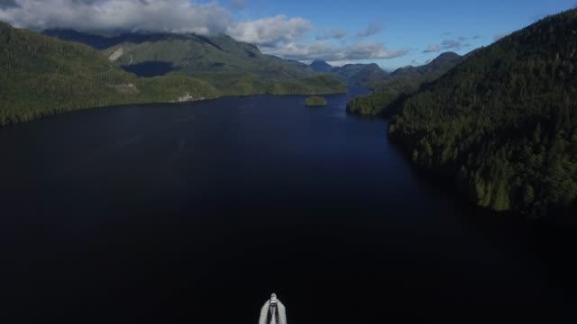 aerial: white boat on dark blue lake surrounded by forest covered mountains - nautical vessel stock videos & royalty-free footage