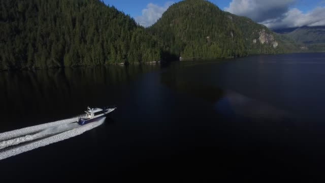 aerial: white motorboat driving next to forest covered mountains - covering stock videos & royalty-free footage