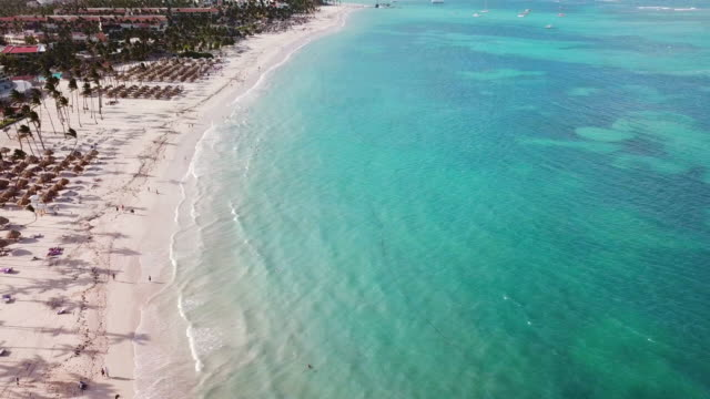 aerial: white sand beach in punta cana - punta cana stock videos and b-roll footage
