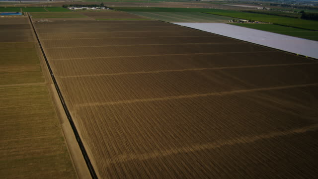 aerial, wide plate-shot shot of green and brown farm fields, near camarillo, california, daytime. - camarillo stock videos & royalty-free footage
