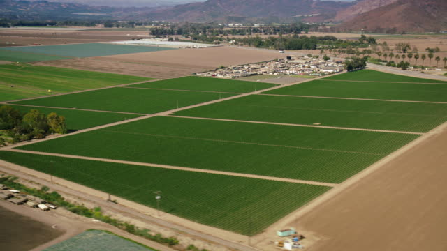 aerial, wide plate-shot shot of green and brown farm fields, with mountains in bg, near camarillo, california, daytime. - camarillo stock videos & royalty-free footage
