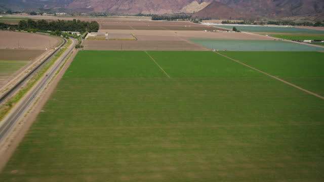 aerial, wide plate-shot shot of green and brown farm fields, with mountains in bg, robinson r44 helicopter flying in upper corner, near camarillo, california, daytime. - camarillo stock videos & royalty-free footage