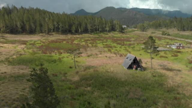 vidéos et rushes de aerial: wild plants on meadow and scenic ruinous hut next to other ruins - autre thème