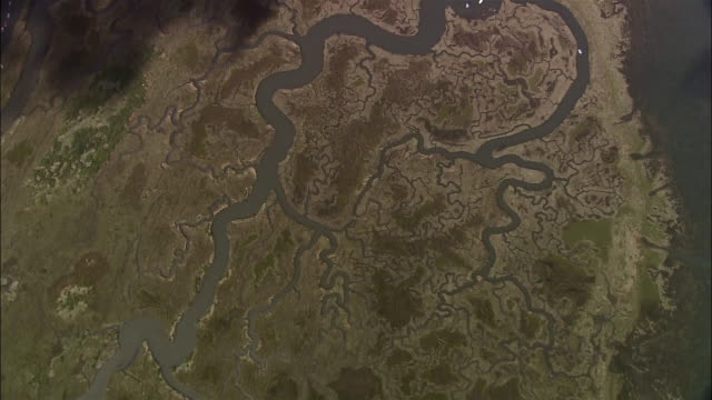 Aerial winding river and tributaries in marsh on Norfolk coast / England