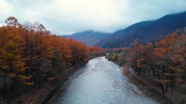 vidéos et rushes de antenne avec chariot vers l'avant de l'automne à kamikochi, nagano, japon. - travelling sur chariot