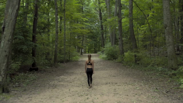 aerial: woman taking a stroll down a trail - connecticut stock-videos und b-roll-filmmaterial