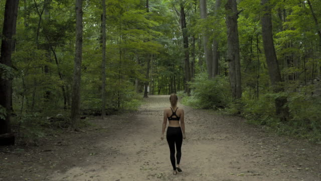 aerial: woman walking on trail in forest - new england usa stock videos & royalty-free footage