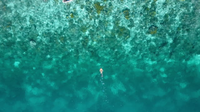 vidéos et rushes de aerial: women swimming around boat in beautiful blue ocean, raja ampat islands, indonesia - végétation tropicale