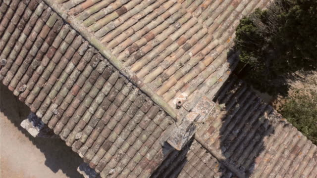 aerial w/s chapel saint sixte in eygalières - one tree hill stock videos and b-roll footage