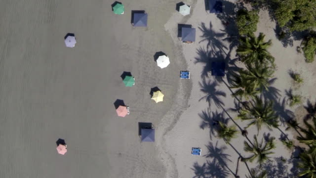 vídeos y material grabado en eventos de stock de aerial w/s samara beach in costa rica - costa rica