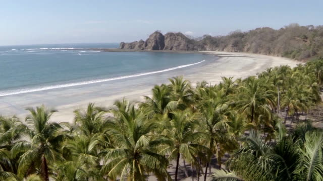 aerial w/s samara beach in costa rica - costa rica stock videos & royalty-free footage