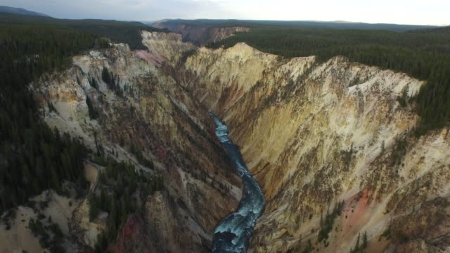 aerial wyoming yellowstone national park - yellowstone nationalpark stock-videos und b-roll-filmmaterial