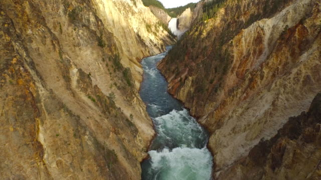 aerial wyoming yellowstone national park - canyon stock videos and b-roll footage