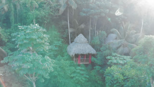 vídeos de stock, filmes e b-roll de aerial: young man sitting on balcony balustrade of lovely tree house - treehouse
