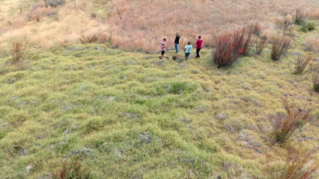 vidéos et rushes de aerial: young men taking pictures in front of scenic ruinous hut - parc naturel