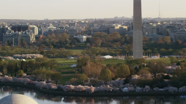 Aerial zoom in on The White House from behind Thomas Jefferson Memorial DC