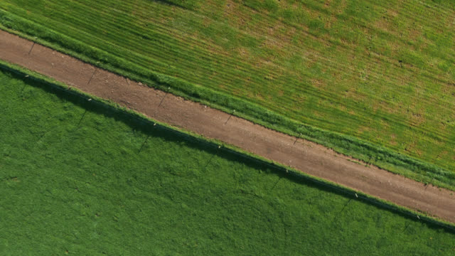 aerial zoom out over farm lane and fields, cumbria, uk - dirt track stock videos & royalty-free footage