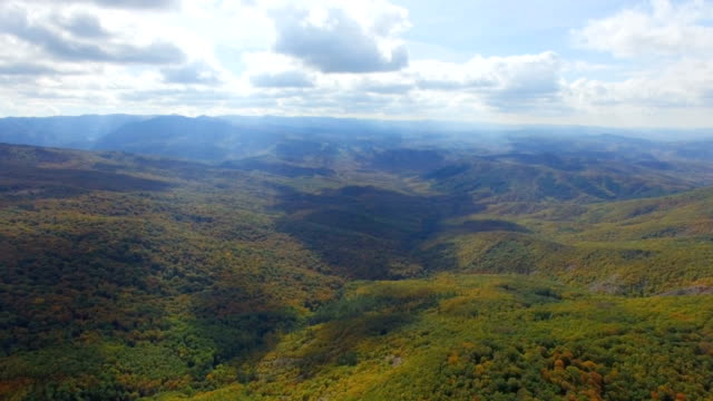 aerial:autumn forest on mountain ridge - wide video stock e b–roll
