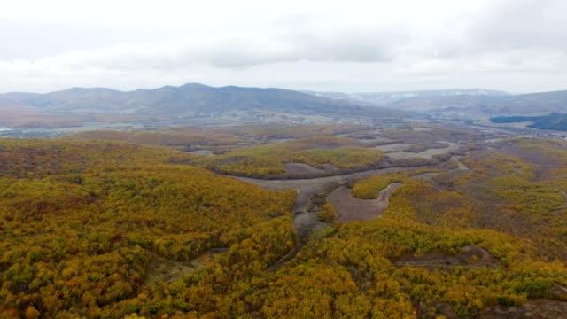 Antenne: Herbst Wald auf Bergrücken