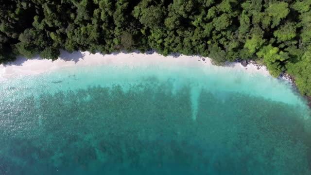 aerial:beach seasacpe - island stock videos and b-roll footage