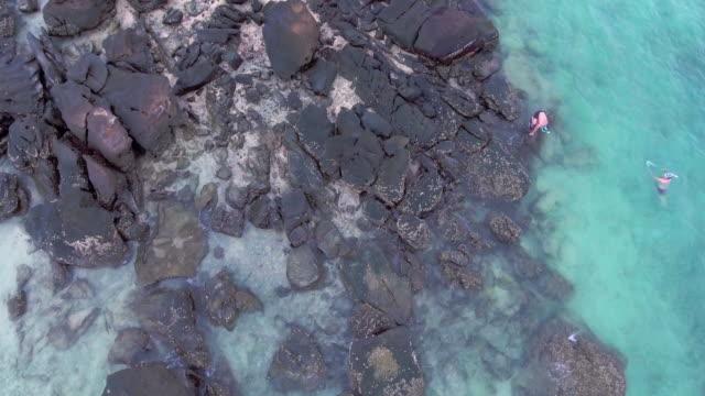 vídeos y material grabado en eventos de stock de gente de antena: multitud en la playa - tumbona