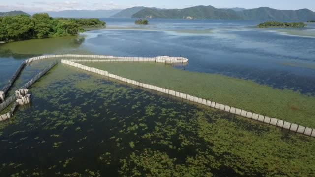 Aerial,Fish Trap in Lake Biwa