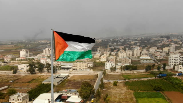 aerial/flag of palestine blowing in the wind - west bank stock videos & royalty-free footage