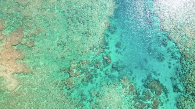航空、海洋、ビーチ - 熱帯気候点の映像素材/bロール