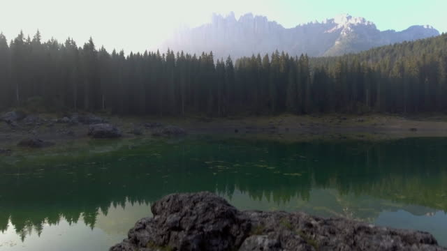 Aerial:Pine forest at lake carezza