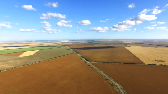 aerial:road through agricultural fields - panoramica video stock e b–roll