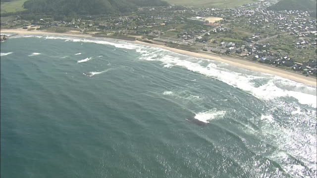 aerials coastline of tottori japan - satoyama scenery stock videos & royalty-free footage