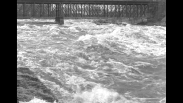 vídeos de stock e filmes b-roll de vs aerials flooded area with buildings in various degrees of submergence / rushing river waters under bridge / cu ms rushing waters / rear shot car... - animal doméstico