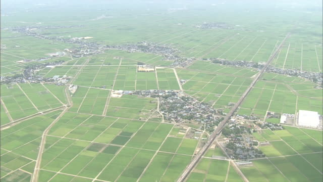 Aerials Over A Rice Field