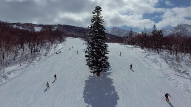 航空写真: スキー - スキー板点の映像素材/bロール
