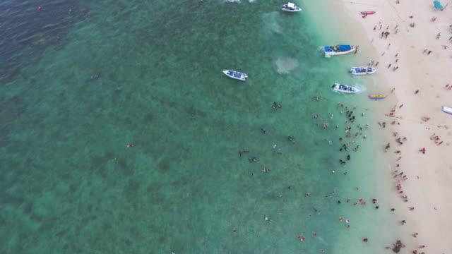 vídeos de stock, filmes e b-roll de antena: férias na ilha de praia - esporte aquático