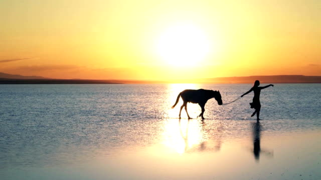 aesthetic walk on the water. ballerina with horse - ankara stock videos and b-roll footage