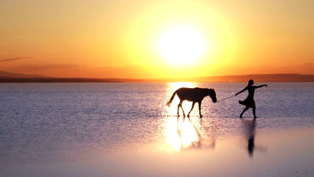Aesthetic walk on the water. Ballerina with horse