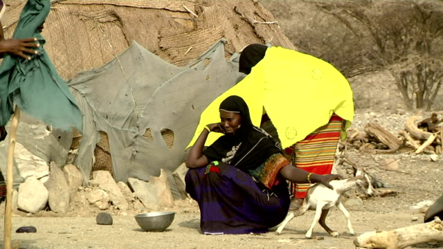 afar people by their huts on august 13, 2011 in afar village, danakil depression, ethiopia - ethiopia stock videos & royalty-free footage